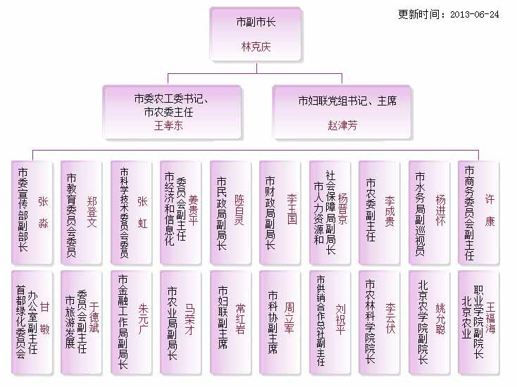 双学双比_组织结构图