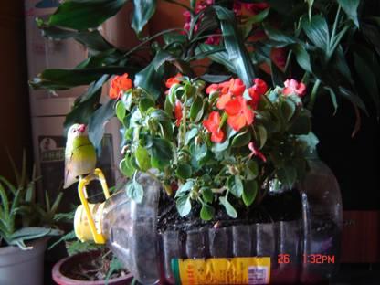 利用废旧塑料瓶制作花盆